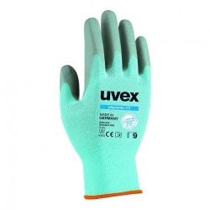Slika za cut-protection gloves phynomic c3