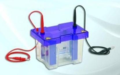 Slika za comb with 12 samples
