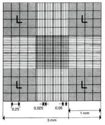 Slika za neubauer counting chamber,double ruling