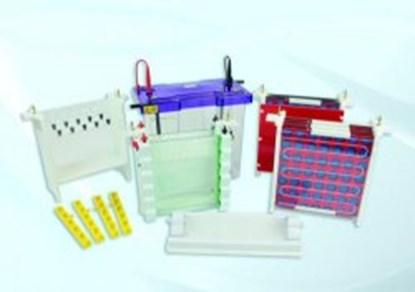 Slika za comb with 24 samples