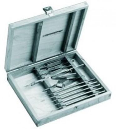 Slika za micro-dissecting